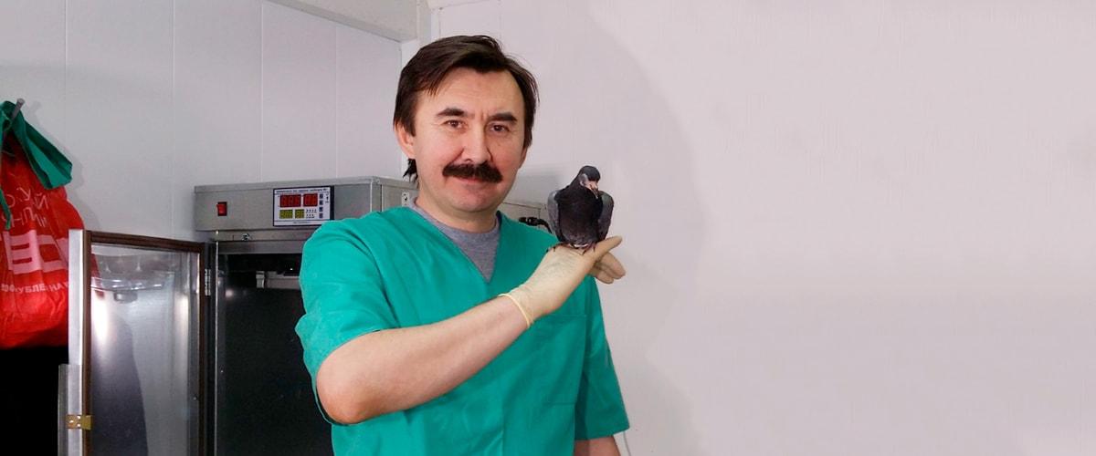 врач орнитолог на дом